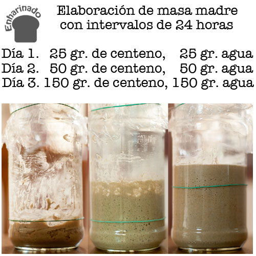 Masa Madre Centeno Ingredientes