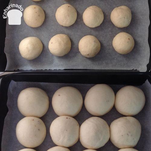 Tunjitas o pancitos dulces venezolanos - Fermentando