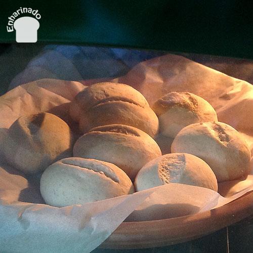 Pancitos de trigo integral 3