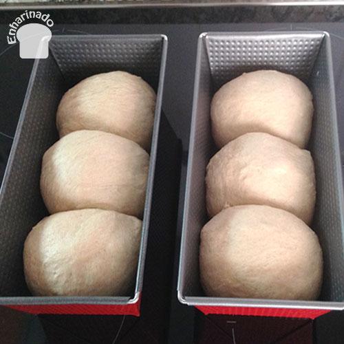 Pan de molde de espelta semi-integral - Fermentación
