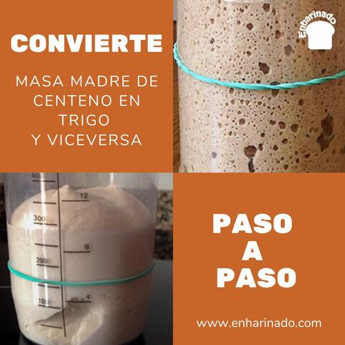 Convertir masa madre de centeno en trigo o viceversa